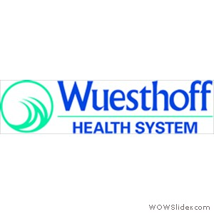 WHSystem_logo_NO_tag_horiz_color(3)